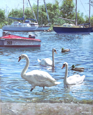 swans_and_boats_at_christchurch_harbour