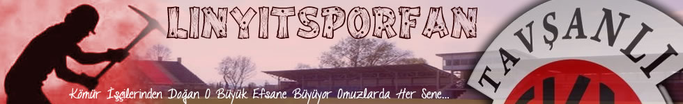 LinyitsporFan