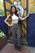 Hindi Actress Sherlyn Chopra photos-thumbnail-9
