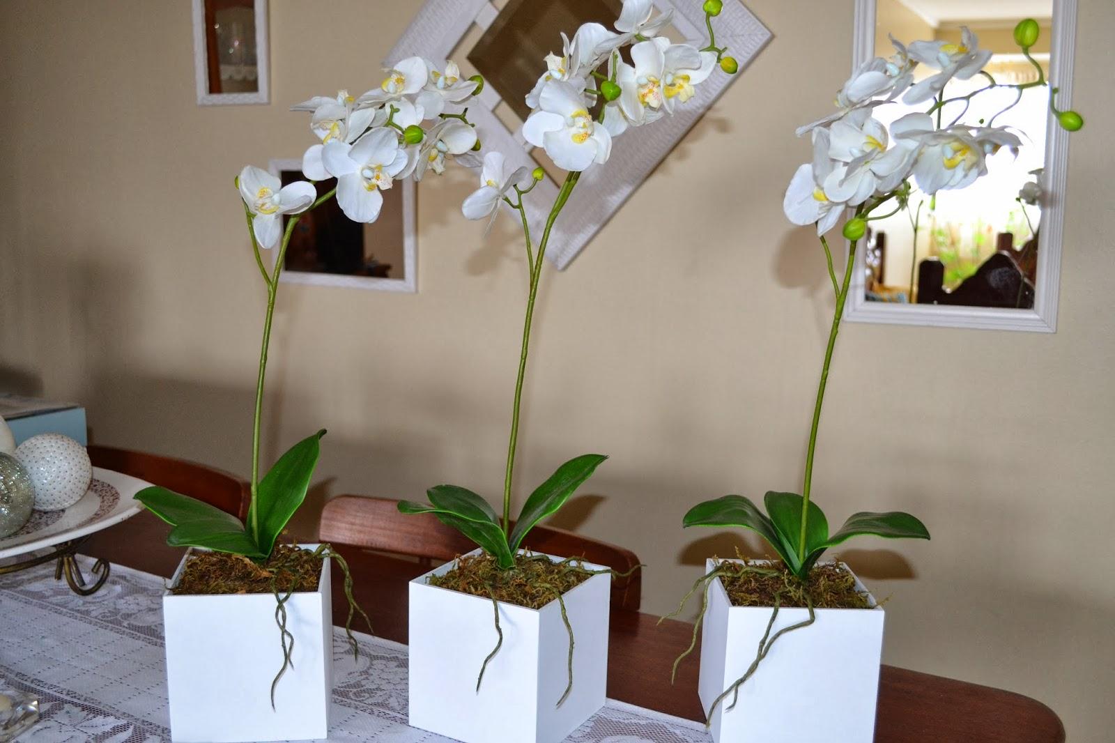 triciclo com arranjo de lavandas e três arranjos de orquídeas para  #3F631B 1600x1066