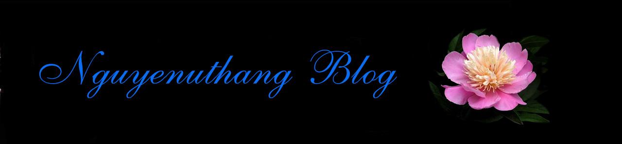 Nguyenuthang Blog