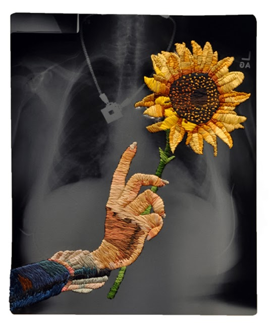 """Sunflower"" x-ray embroidery art by Matthew Cox"