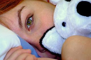 oso teddy-oso de peluche-peluche-objeto transicional-objeto