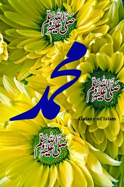 Sunflower, Name Of Muhammad PBUH, Darood e Pak