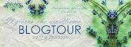 BlogTour: Il giorno che aspettiamo di Jill Santopolo