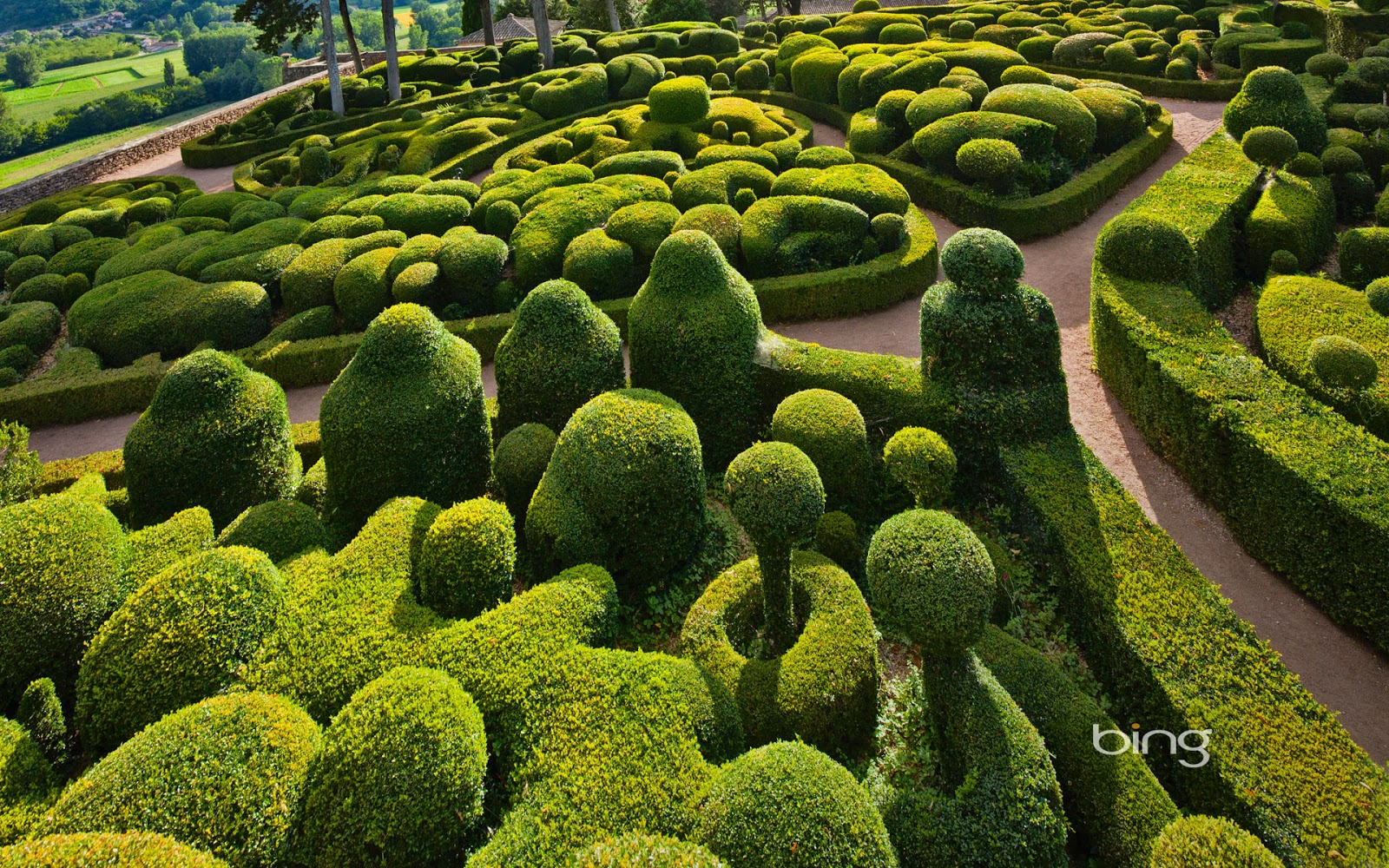 Sculpted boxwoods at the Chateau de Marqueyssac in Vézac, France