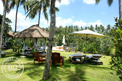 The Viceroy Bali, Ubud Review - Infinity Pool