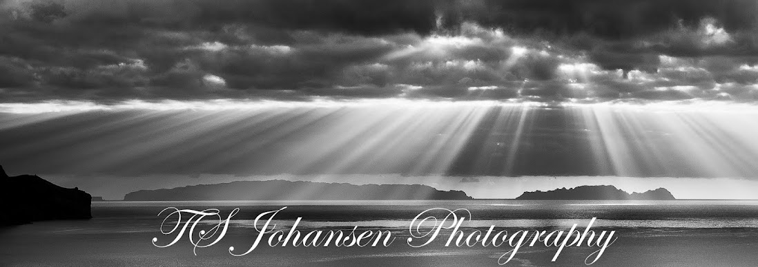 TS_Johansen Photography