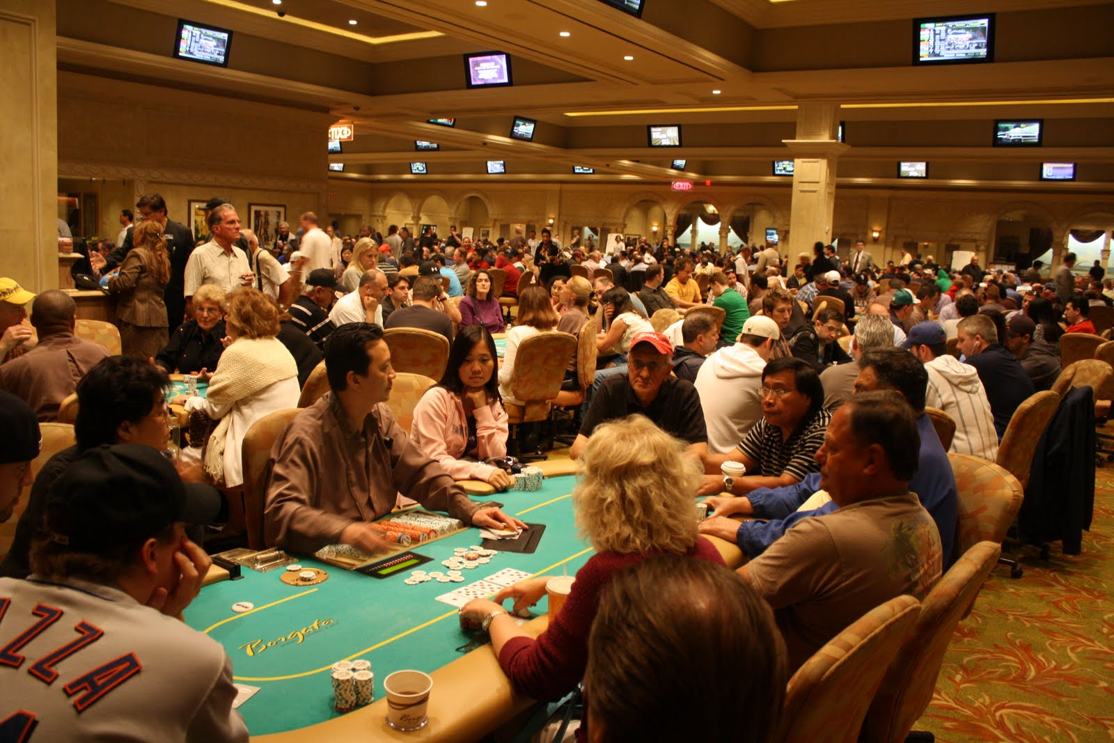 Holland america alaska cruise gambling
