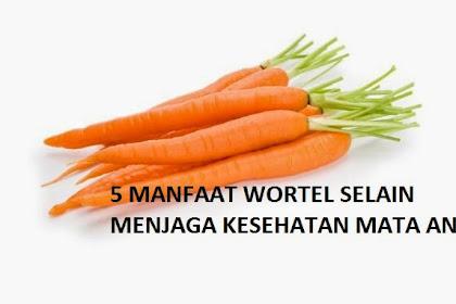 5 Manfaat Wortel Selain Menjaga Kesehatan Mata