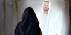 Bible Videos-The Life of Jesus Christ