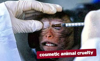 cosmetic animal cruelty, denek hayvanlar