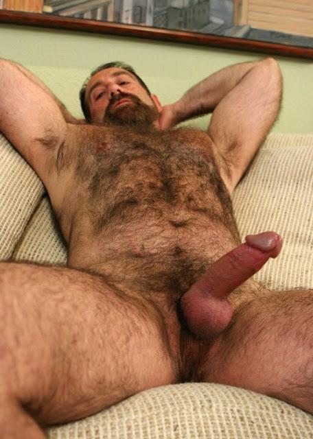 gay bear pics