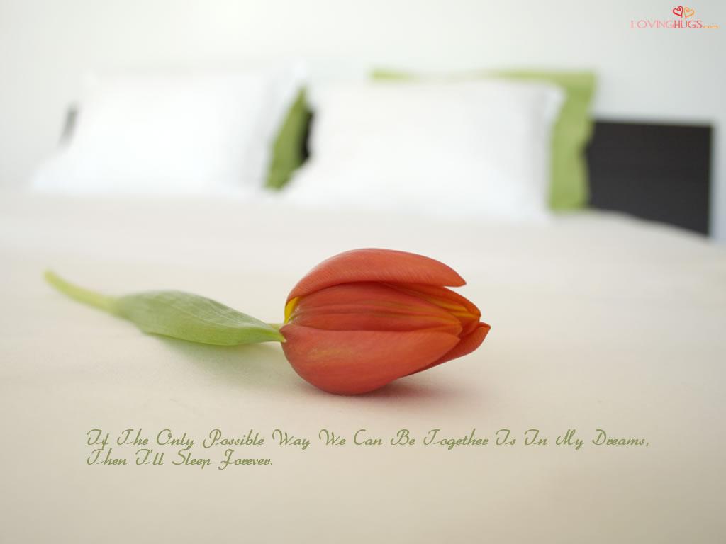 http://4.bp.blogspot.com/-2RPzTWi-7X4/Thq4JCo8YcI/AAAAAAAAABc/mDBxYQDopSA/s1600/love-wallpaper24.jpg