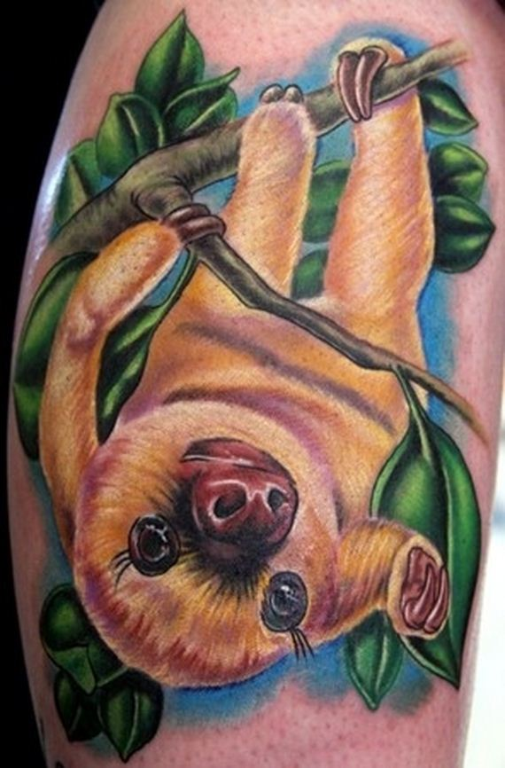 of the best sloth tattoos of all time. Black Bedroom Furniture Sets. Home Design Ideas