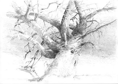Zeichnen in der landschaft m rz 2011 - Garten zeichnen ...