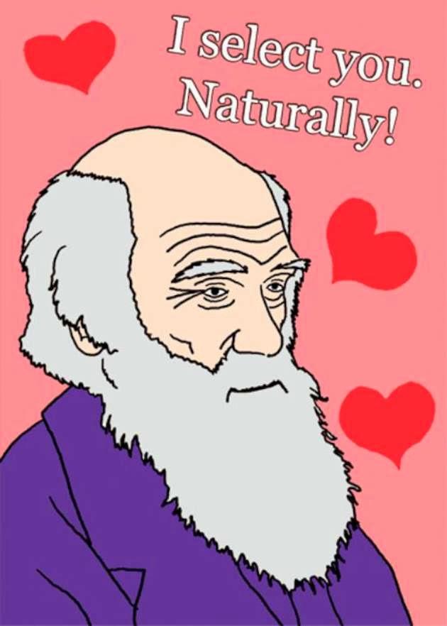 Monkey Muck I love you so I got you four Valentine cards – Monkey Valentine Cards