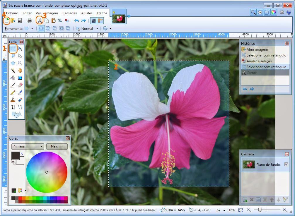 Paint NET Ferramenta selecção+tesoura+novo