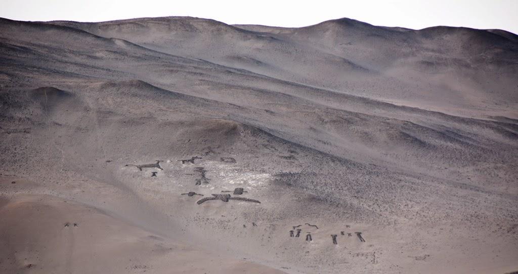 Geoglyphs Arica birds