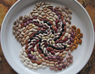 Why You Should Eat More Beans? Find the reasons