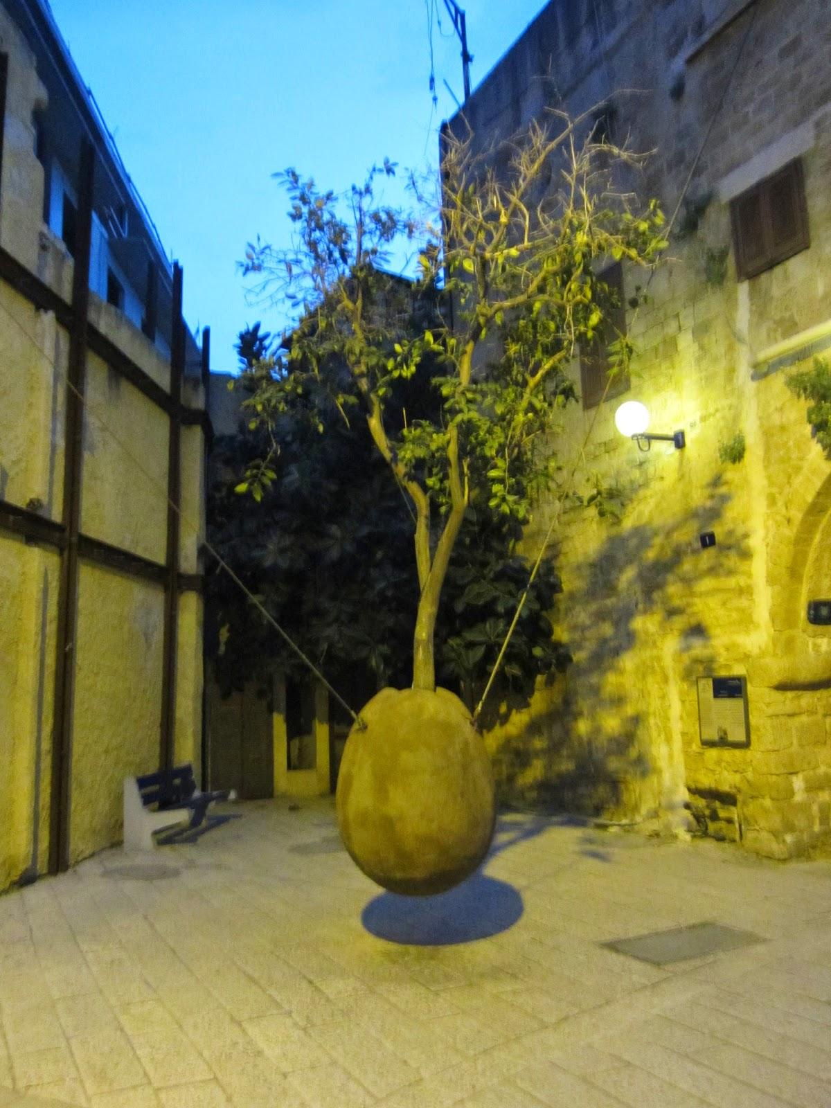 Oranger Suspendu, Jaffa