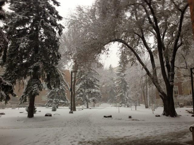 A Snowy Path @ UAlberta