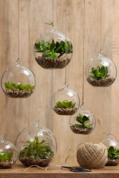 inspiracje w moim mieszkaniu domowe mini ogr 243 dki 9 gorgeous ways to decorate with plants melyssa griffin