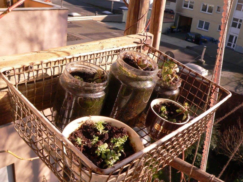 Balkon Frühling