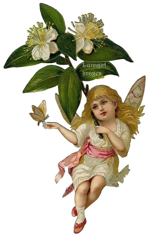 Happy Spring Blessings to You