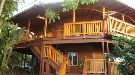 Modern Design Home on Home Design  Bamboo House Design
