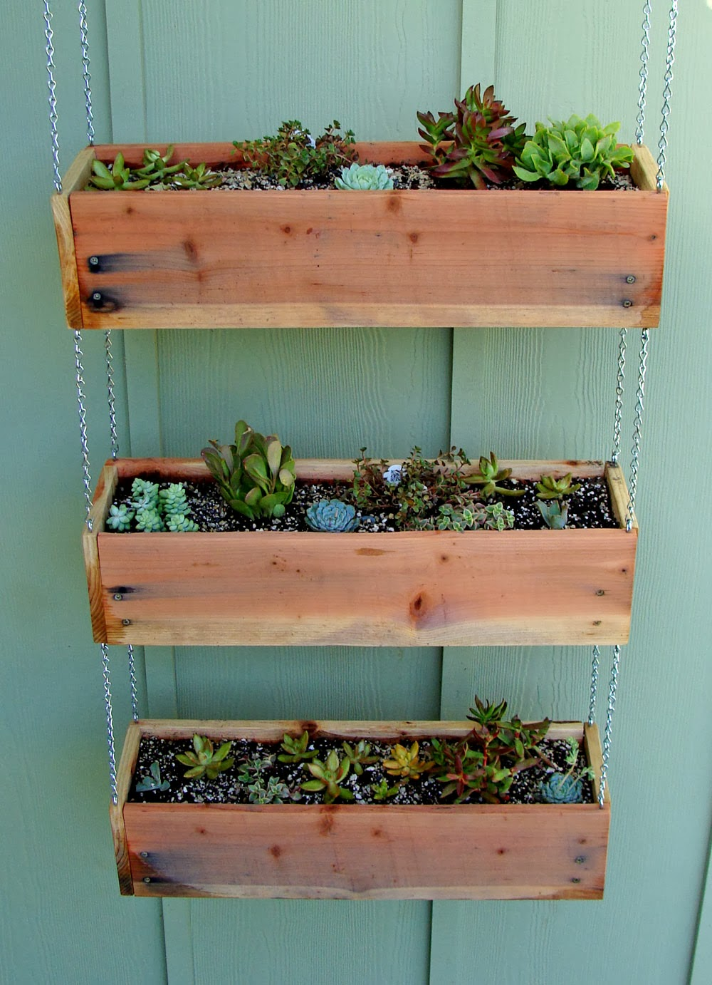 Exceptional DIY Succulent Planter