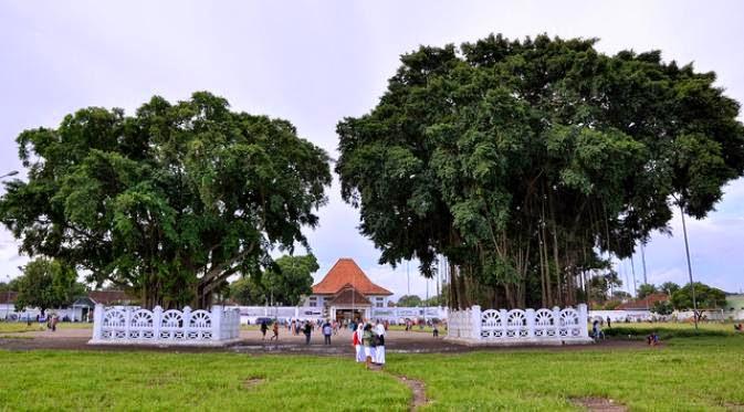 Pohon Beringin Kembar Alun-Alun Yogyakarta Terbakar