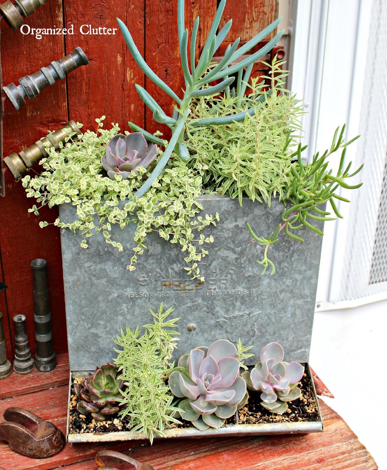 Outdoors And Gardening: Dana's Fun Outdoor Junk Decor & Gardens
