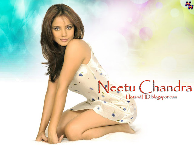 neetu chandra hot and hd wallpapers