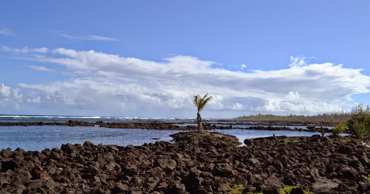 Family Travel Blog Hawaii Daily Photo Wai Opae Tide Pools Big Island