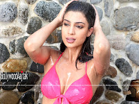 Tena, Desae, in, Spicy, Stills, From, The, Movie, Table, Number, 21,