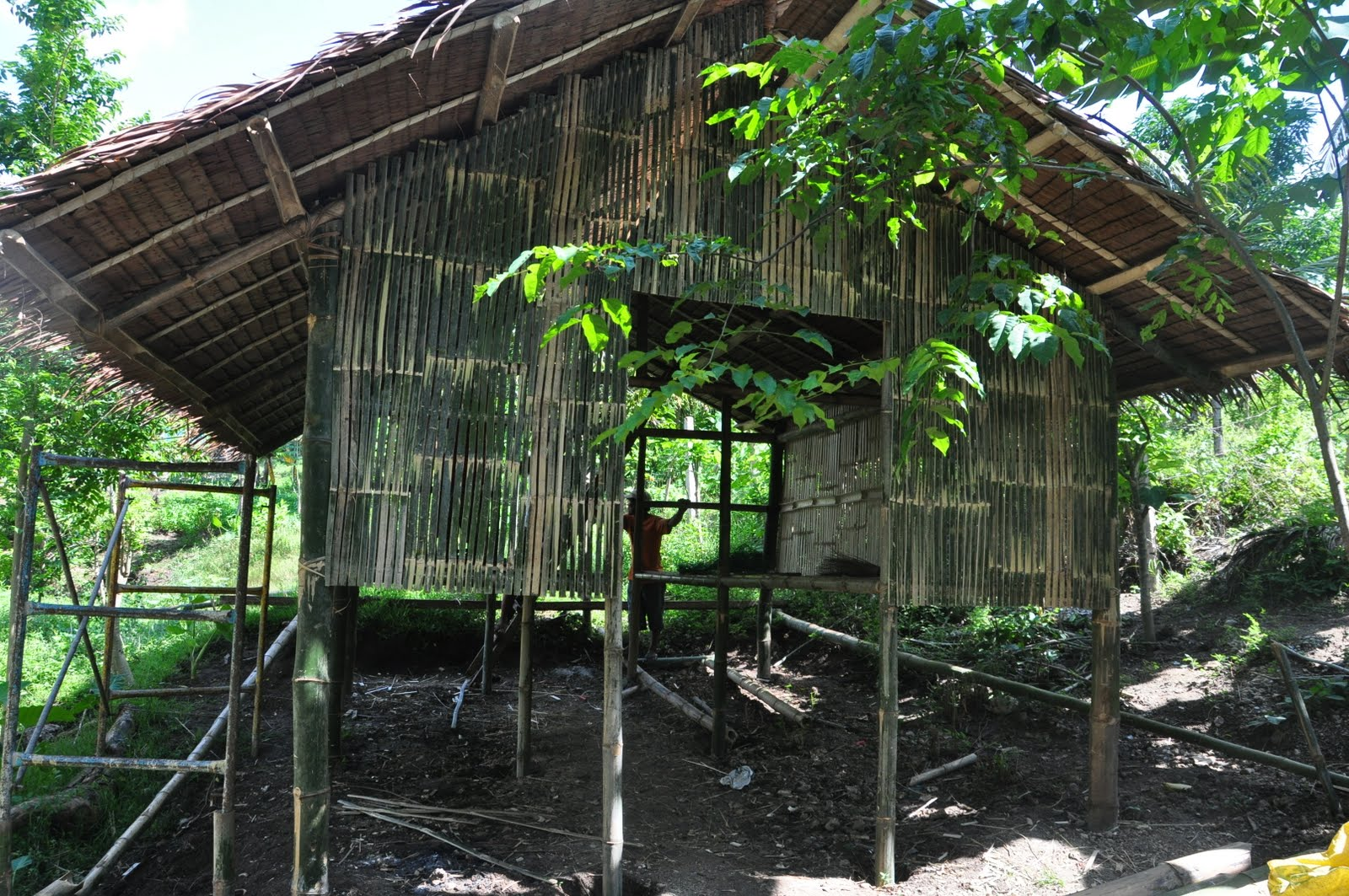 Adventures In Sustainability The Ramas Natural House And