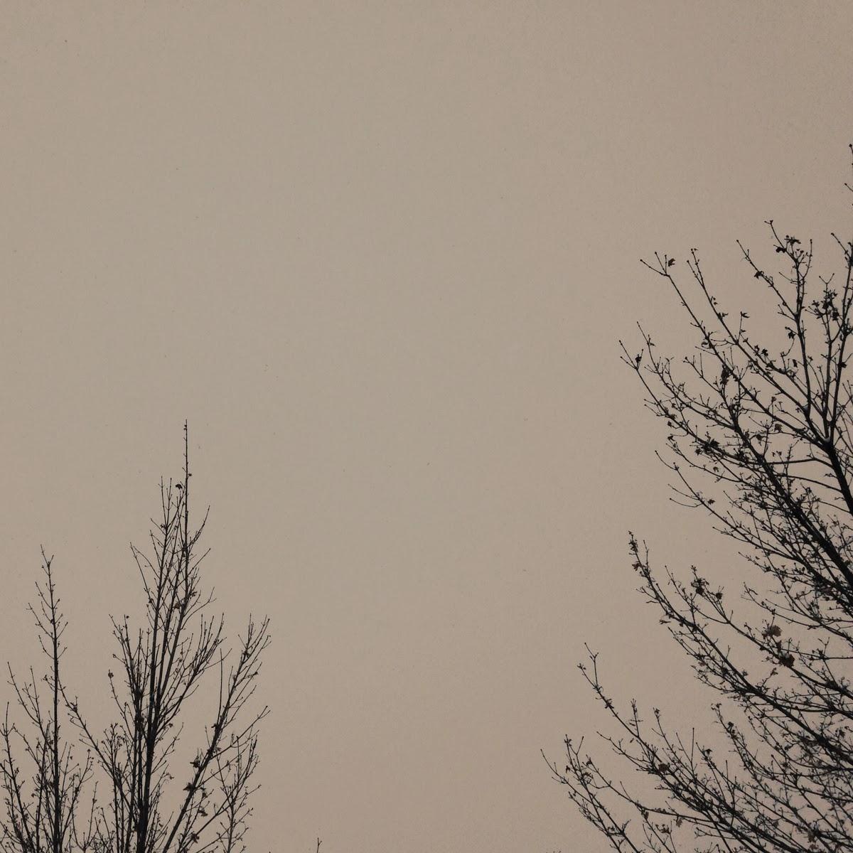 Darren Harper - Autumnal Fragments & Sketches
