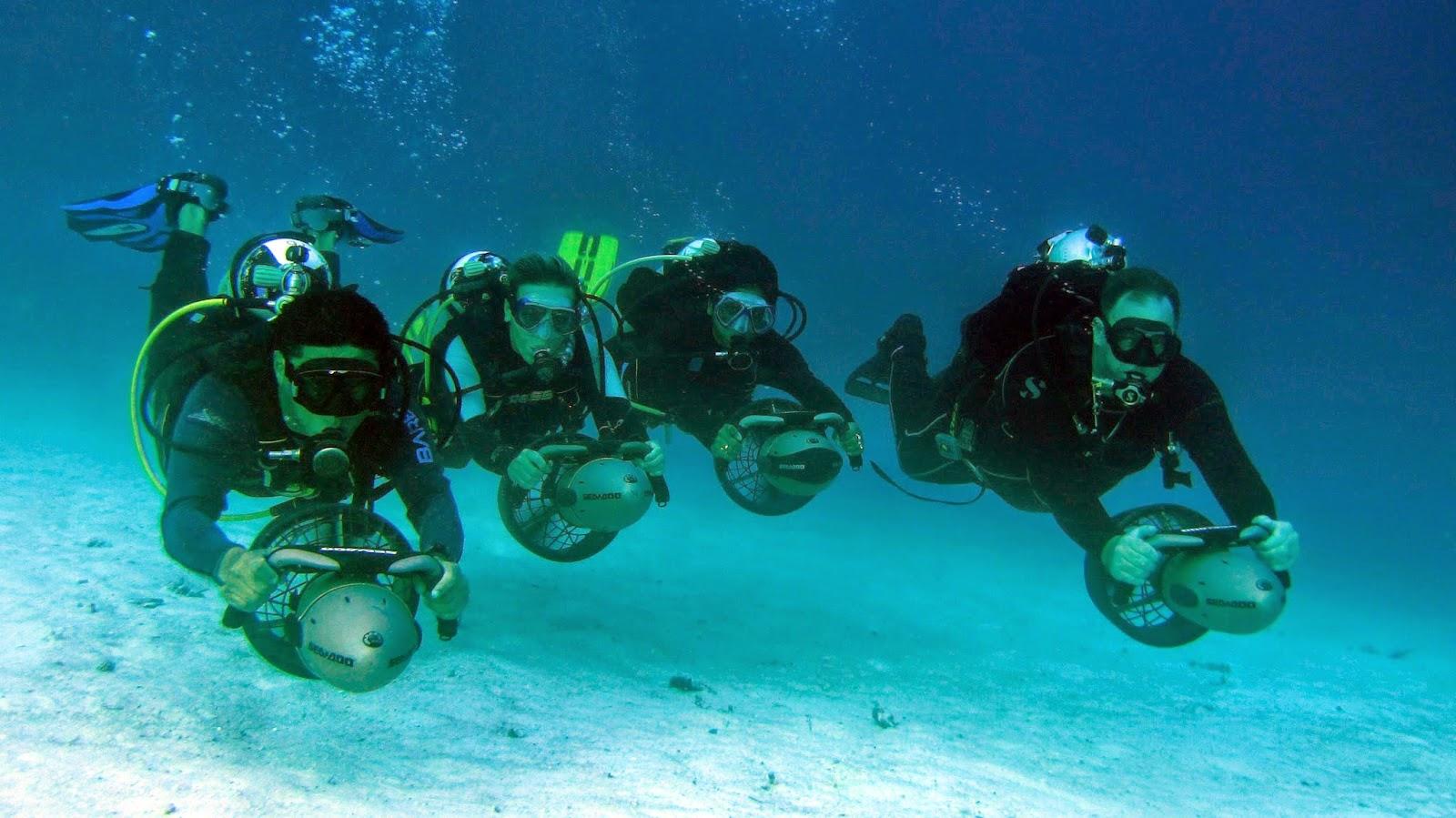 Maldives Liveaboard Diving