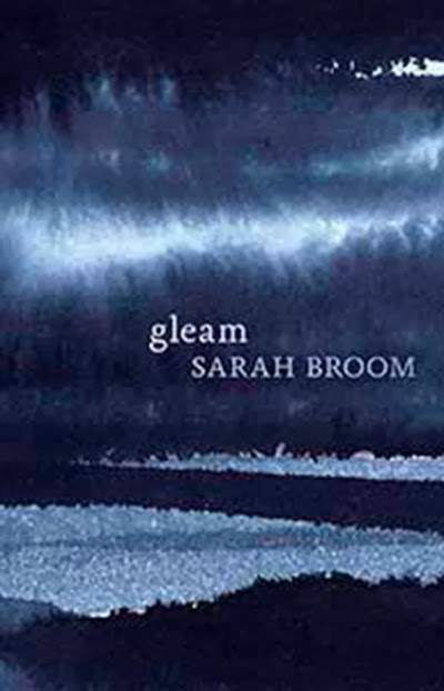 cover image of gleam