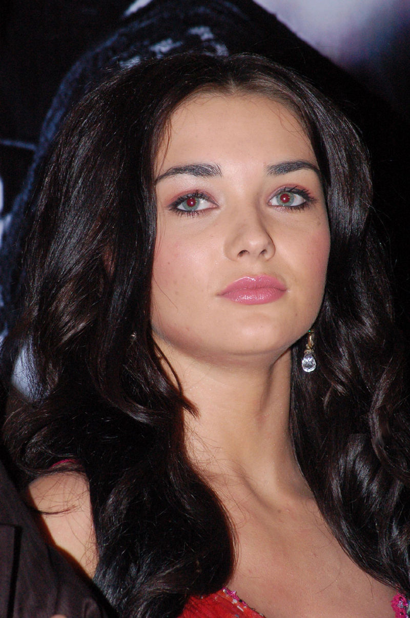 Amy Jackson Net Worth
