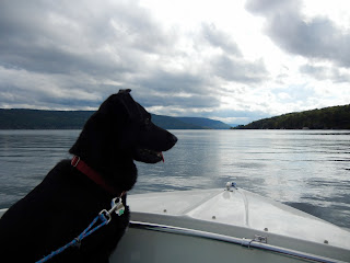 Our dog Chloe enjoying riding on a boat on one of the Finger Lakes in New York