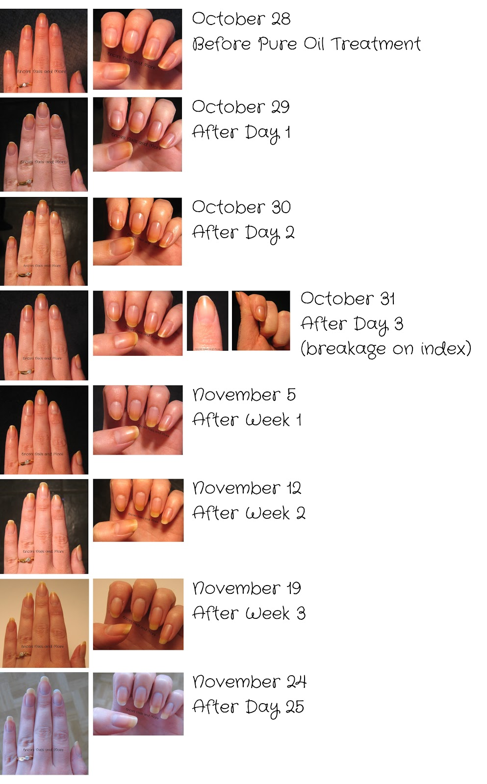 Ericas Nails And More Simple Nail Art Tips PureTM