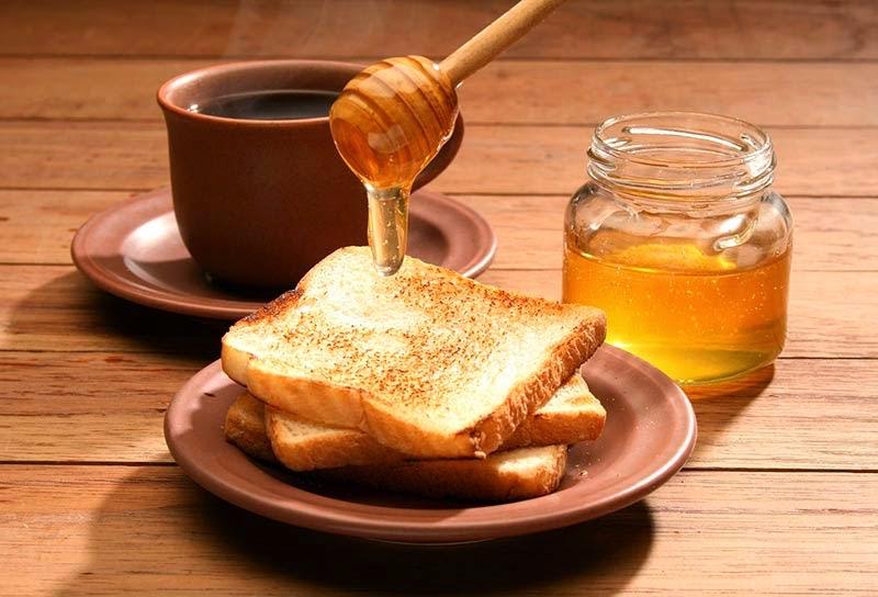 Cachorro pode comer mel?
