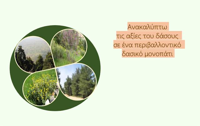 http://blogs.sch.gr/geapostoli/files/2015/08/Anakalipto-tis-axies-tou-dasous-se-ena-perivallontiko-monopati_Vasiliki-Kontou.pdf