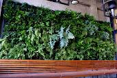 #15 Vertical Garden Design Ideas