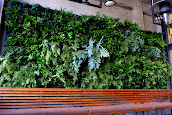 #7 Vertical Garden Ideas