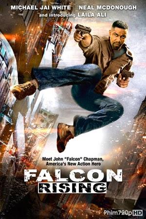 Falcon Rising 2014 poster