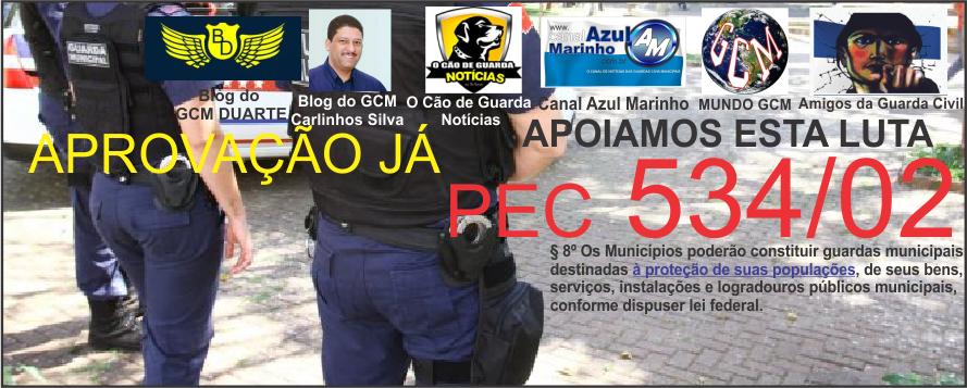 Aprovação PEC 534/02