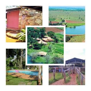 Luxuosa Fazenda de 100 Alqueires - em Morrinhos Goiás